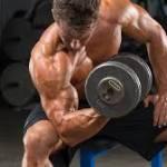 Tahukah Anda Biceps Ada Dua Bahagian