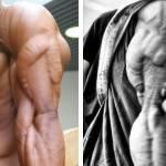 Angkat Besi Sampai Otot Kembang