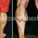 Bina Betis Macam Bodybuilder